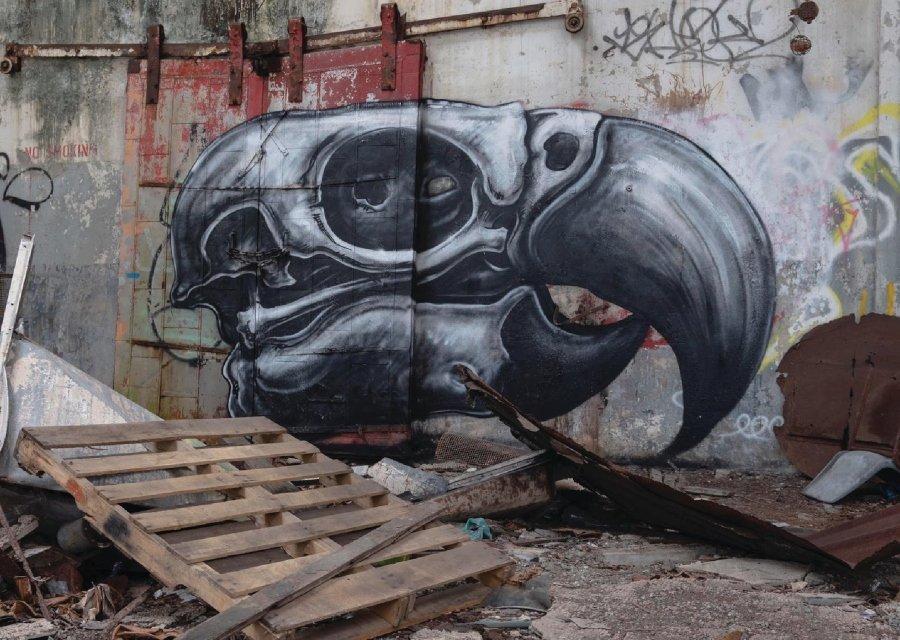 Mural del cráneo de un ave