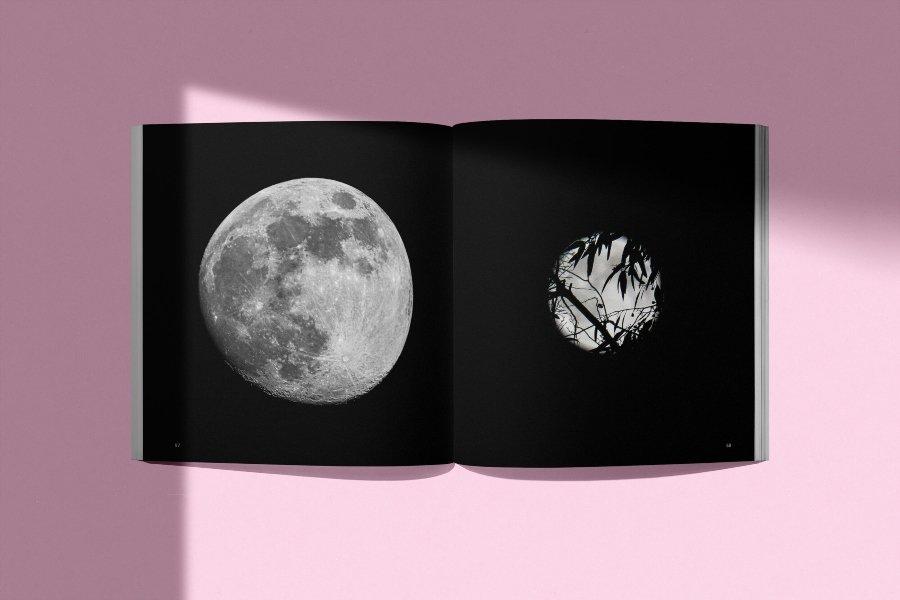 """Contenido del libro """"The Moon"""" de Tim Easley"""